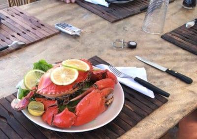 crabe de Mazava -mazavaloha-ecole-kite-mer-emeraude-madagascar