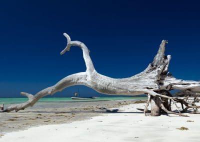 Mazavaloha-resort-mer-emeraude-madagascar-kite-windsurf-40
